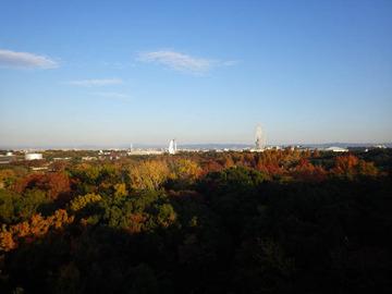 20191201-万博公園2.jpg