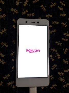 RakutenMini-14.jpeg