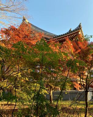 chishakuin-2020-2.jpeg