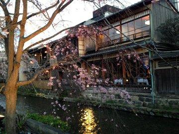 gion-shirakawa-1.jpg