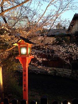 gion-shirakawa-3.jpg