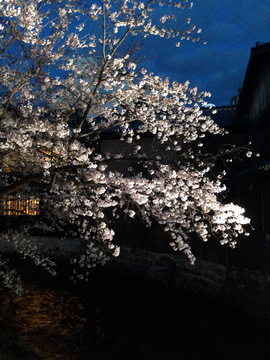 gionshirakawa-202003.jpeg