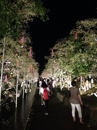 horikawa-yuho-6.jpg