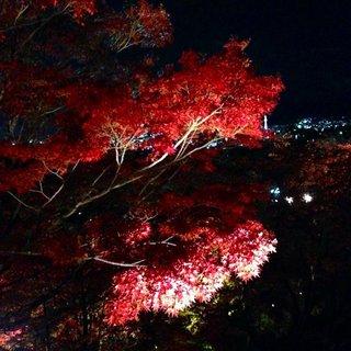 kiyomizu-fall-2.jpg