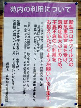 kyotogyoen-2020-6.jpg