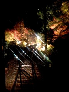 momiji-tunnel-2.jpg