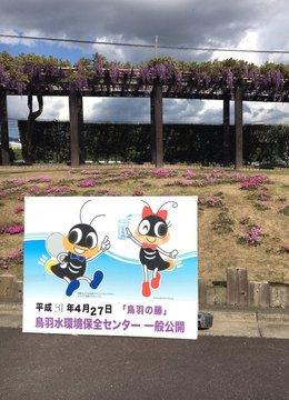 toba-fuji-1.jpg